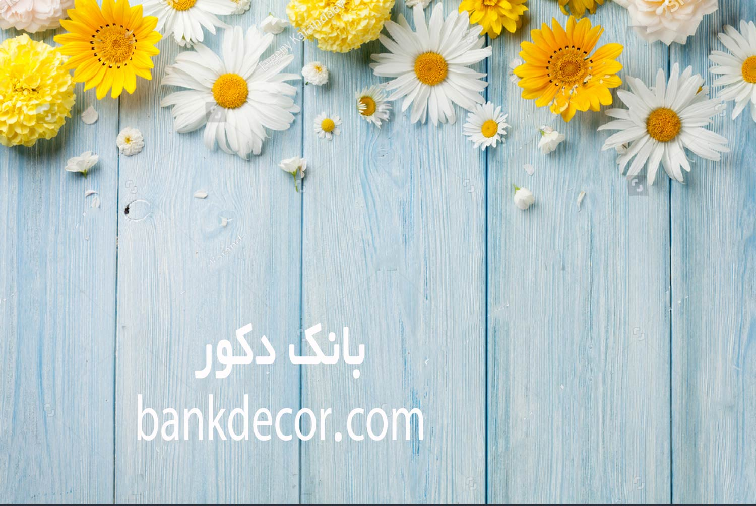 stock-photo-garden-flowers-over-blue-wooden-table-background-backdrop-with-copy-space-457841500.jpg